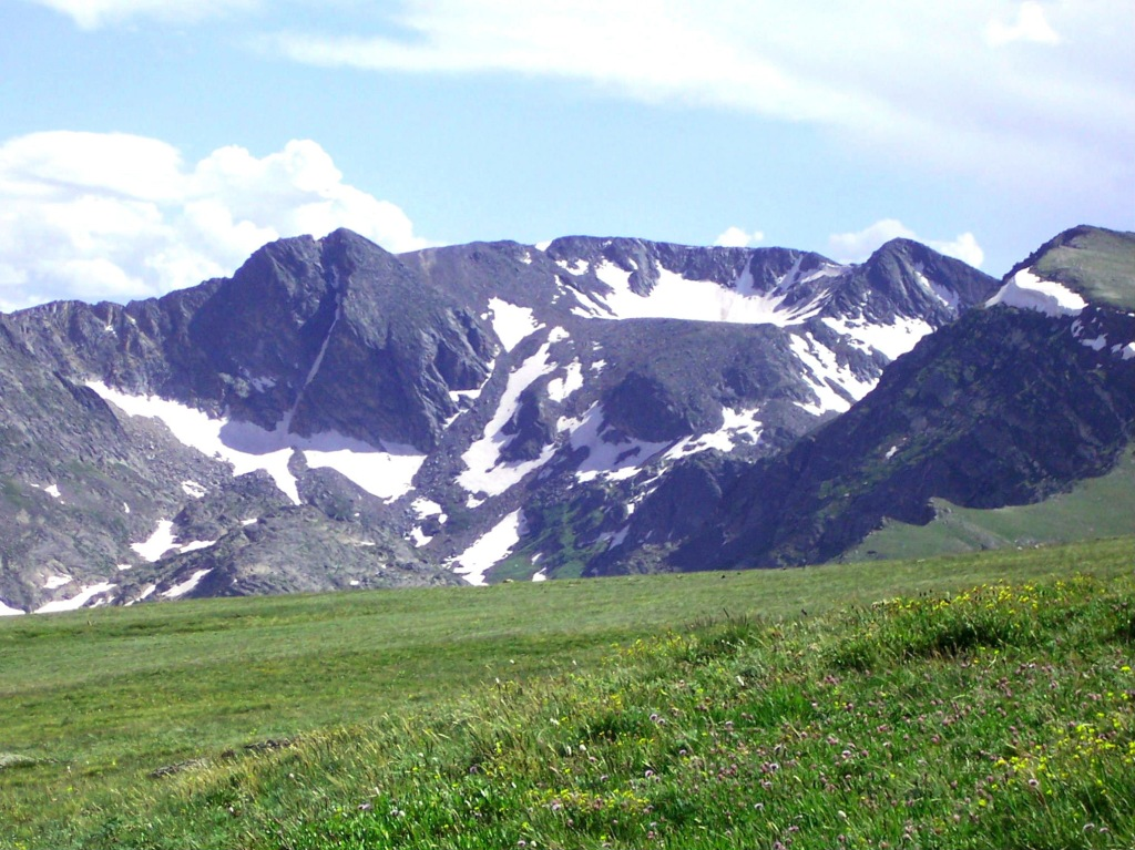 Alpine mountains and meadow