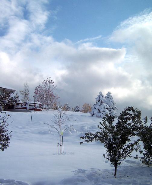 Snow-sky