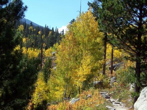 Mtns-Aspen